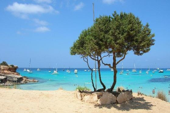 FORMENTERA ISLAND TOUR BY BUS - 85 €