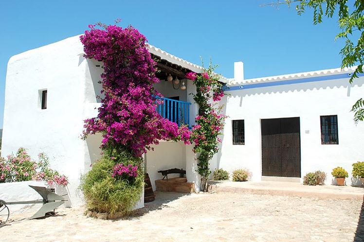 white-houses-architecture-ibiza